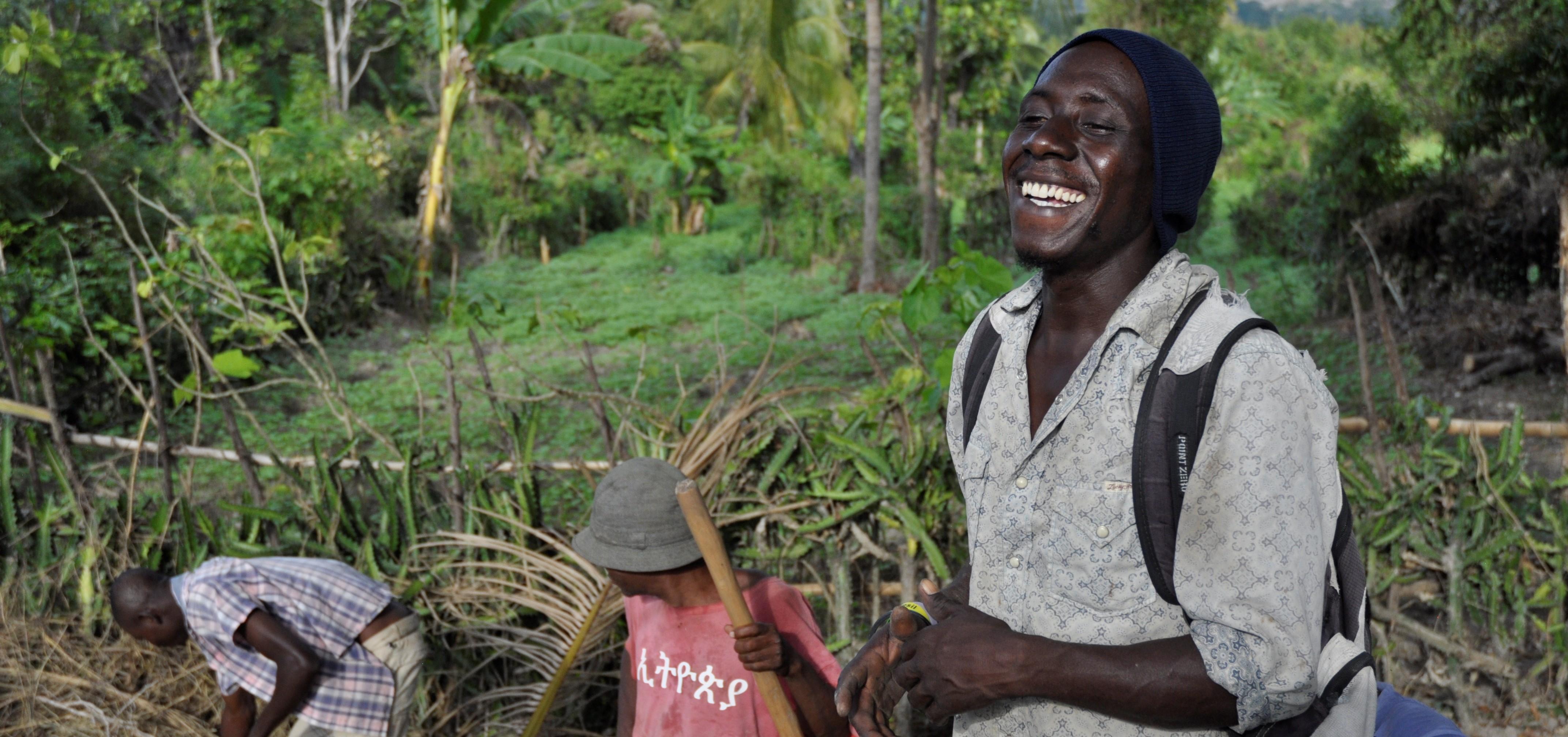 Haiti Farming