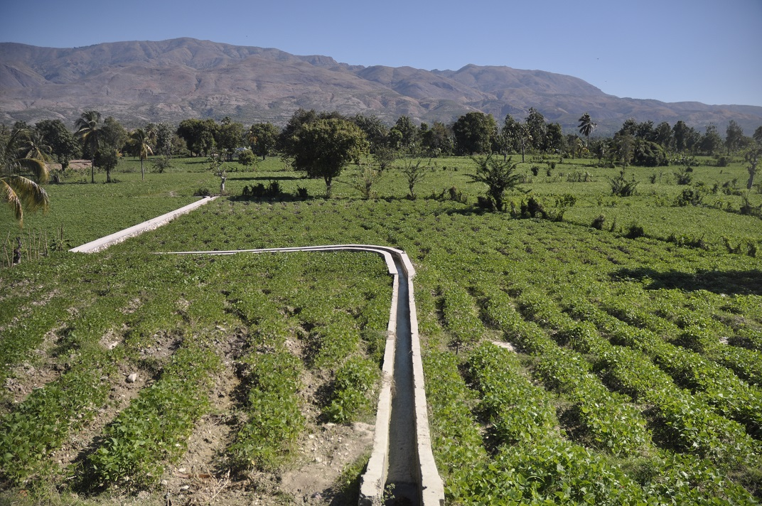 Haiti farm field with modern watering canal