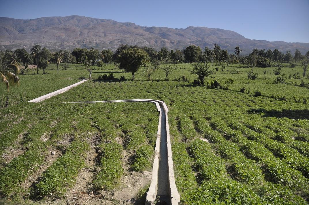 Haiti farm field with modern watering canal